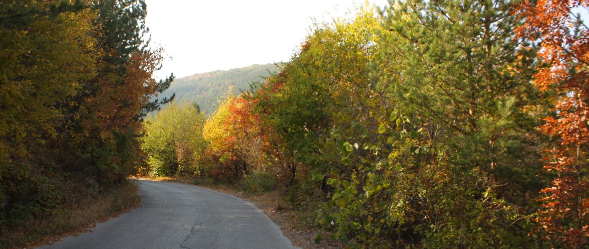 Есенна природа